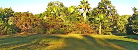 hawaii botanical gardens hawaii botanical gardens