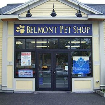 puppy stores in ma belmont pet shop 32 reviews pet stores 17 flett rd belmont ma phone number