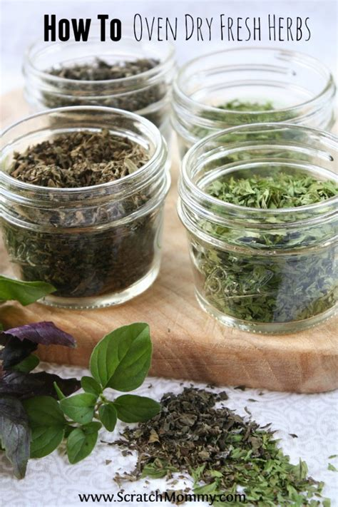 Herbal Naturindo Fresh Spesial Jantung how to oven fresh herbs pronounce scratch