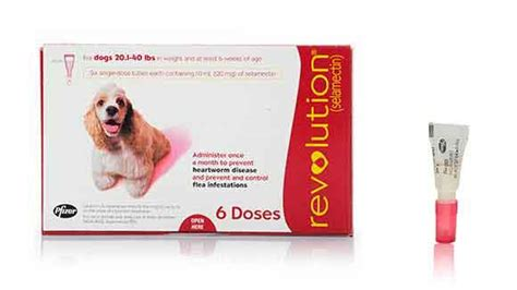 heartworm revolution dogs for revolution selamectin flea and heartworm treatment petcarerx