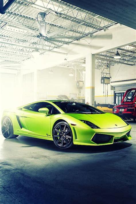 Lime Green Lamborghini For Sale 1000 Images About Cars On Lamborghini Veneno
