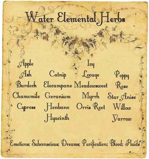 the chosen witch the coven elemental magic books water elemental herbs wiccan wisdom