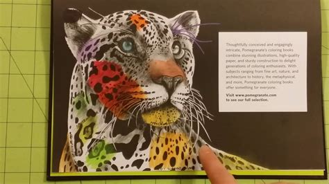 libro intricate ink animals in the intricate ink animals in detail by tim jeffs coloring book review flip through youtube