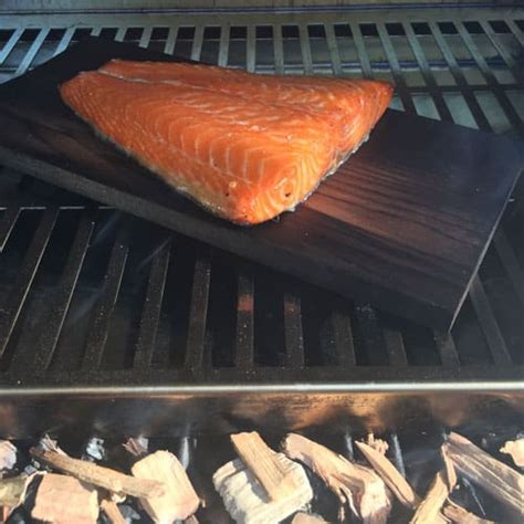smoked salmon room temperature how to make smoked salmon tec infrared grills