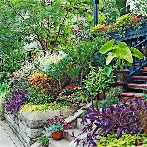 1000 images about gardening on a hill on pinterest