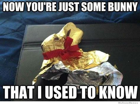Chocolate Easter Bunny Meme - easter memes so i had a baby