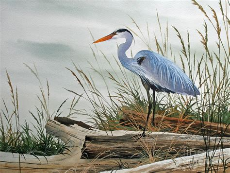 Draw House Plans Online Free beautiful heron shore painting by james williamson