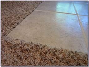 Tile To Carpet Threshold Strips Ceramic Tile To Carpet Transition Tiles Home