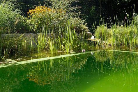 giardino islamico progettazione giardino islamico e arabo parchi tematici