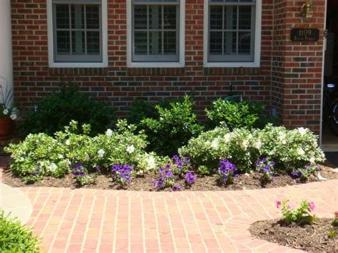 Top 28 Bushes For Front Of House Landscape Zone Five And A Half Foundation