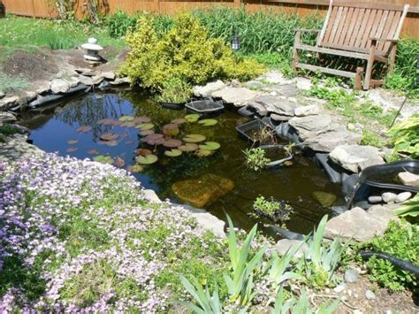 Small Water Garden Ideas 18 Lovely Ponds And Water Gardens For Your Backyard