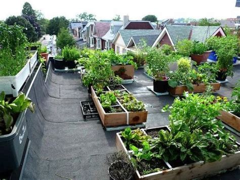 rooftop landscaping 28 rooftop gardens that inspire to have your own one