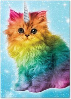 caticorns images  pinterest   unicorn