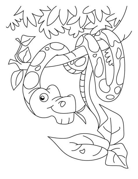free ball python coloring pages