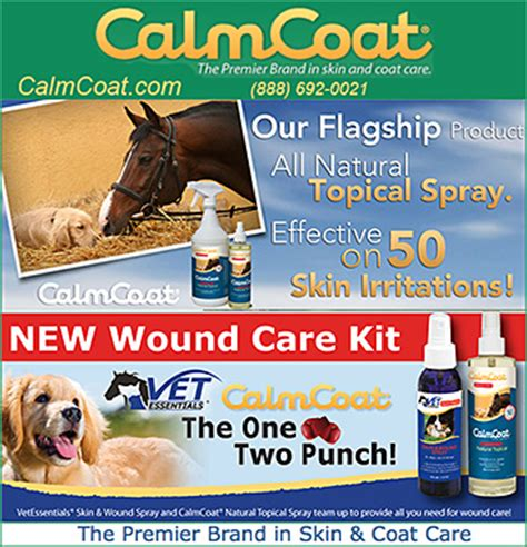wound care for dogs wound care for dogs