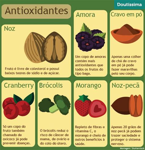 alimentos anti oxidantes conhe 231 a os benef 237 cios dos alimentos antioxidantes