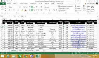 design professional database with microsoft excel