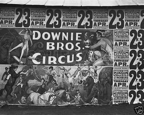 the tiger and the acrobat books downie bros circus walker poster photo acrobat