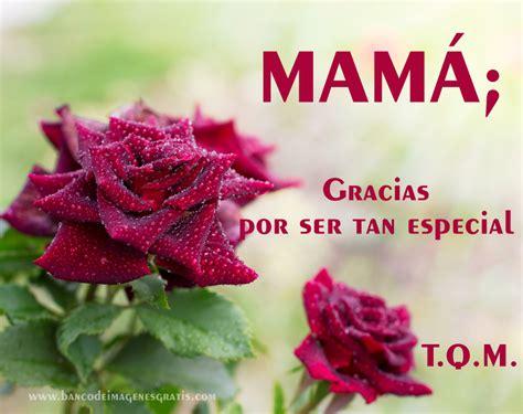 imagenes gracias x ser tan especial celebrity styles 161 feliz d 237 a de las madres recopilaci 243 n