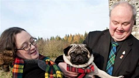 scottish pug club fred the pug to welcome the line