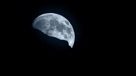 silversea cruises silver moon introducing silversea s silver moon iglucruise youtube