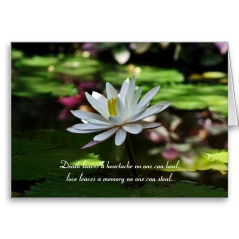 condolence phrases  sympathy cards  flowers