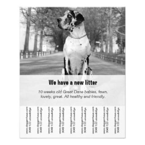 puppy flyers programs zazzle