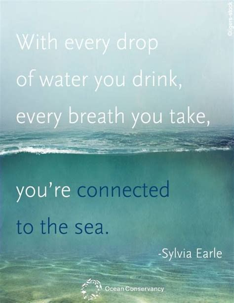 sea quote youre connected   sea sylvia earle beach quotes ocean quotes sayings