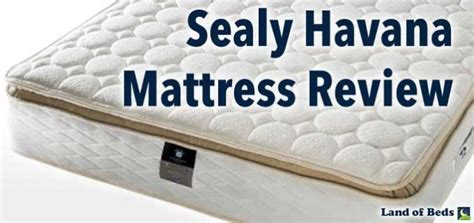 land of beds sealy mattress review
