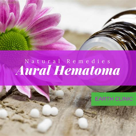 ear hematoma heal on its own aural hematoma remedies