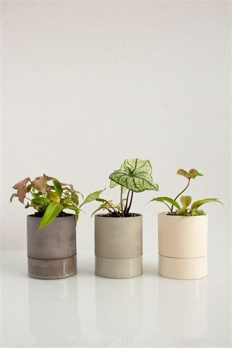 small self watering pots small self watering pots 28 images self watering