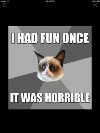 Cat Meme Generator - 25 best ideas about grumpy cat meme generator on