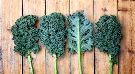 3 vegetables to never eat 3 ways you never expected to eat kale