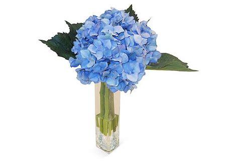 Best Vase For Hydrangeas hydrangea in vase write