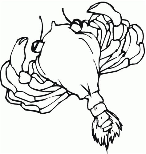 ghost crab coloring page ghost crab coloring download ghost crab coloring