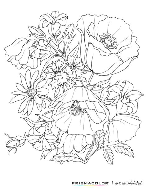 florals a coloring book for adults coloring collection books 25 best ideas about flower coloring pages on