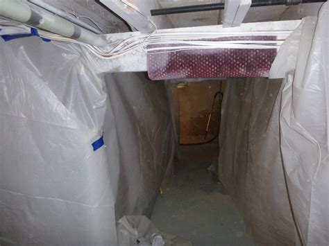 what causes mold in basement 100 what causes mold in basement what causes a d