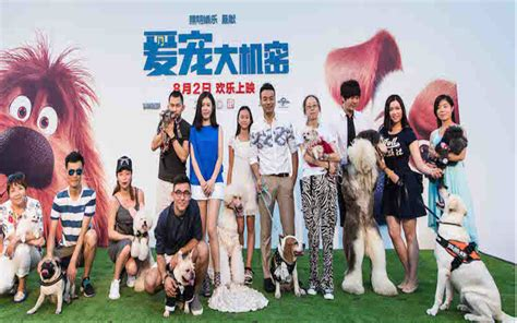china film group corporation website on screen china summer slump sees july drop 18 from a