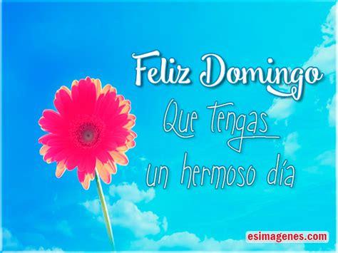 wallpaper mensajes de feliz sbado y feliz domingo con flores de tarjetas con mensajes de feliz domingo im 225 genes tarjetas