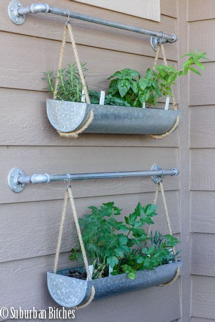 hanging wall herb garden best 25 hanging herbs ideas on wall herb