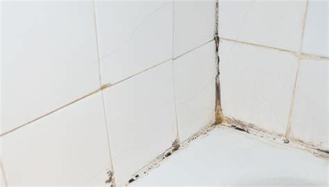 rimuovere vasca da bagno come rimuovere la muffa da doccia e vasca da bagno