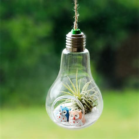 Light Bulb Terrarium by Hanging Lightbulb Air Plant Terrarium With Owls By