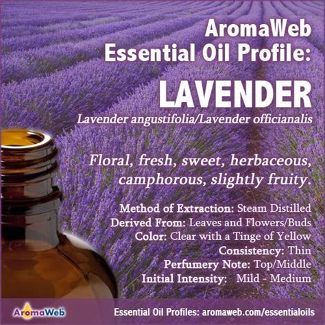 A Brief Profile Of A Few Essential Oils by 38 Best Essential And Absolute Profiles Images On