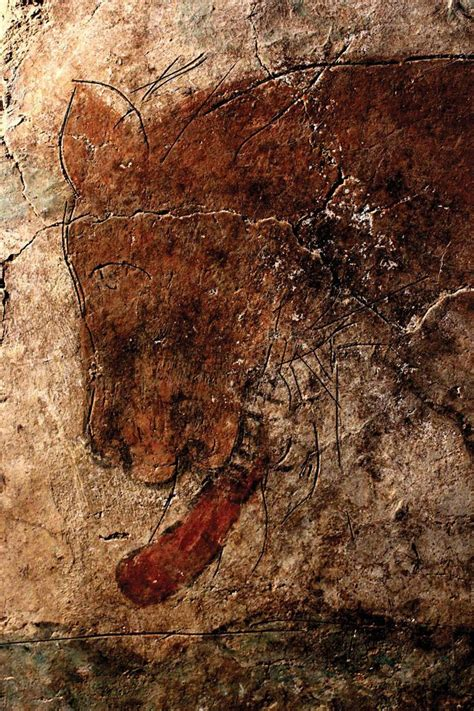 the cacouna caves and the mural books mexican cave painting of a jaguar black jaguar