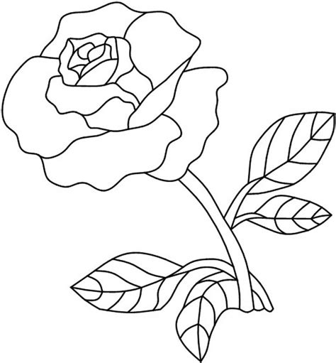 rose pattern line drawing single red rose painting on glass