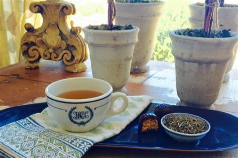 Holy Tea Detox Symptoms by Vegan Archives Dane