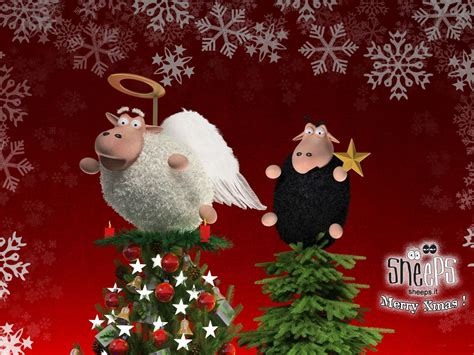 new year sheep story two sheep on wallpapers and images wallpapers