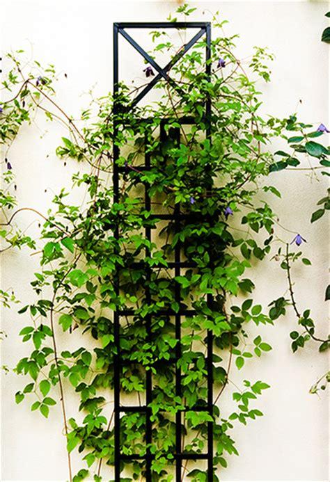 espalier trellis classic garden elements uk
