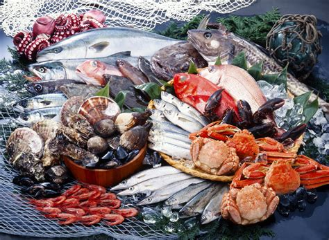 alimenti aumentano la fertilitã maschile benefici della vitamina b12 sulla fertilit 224 maschile