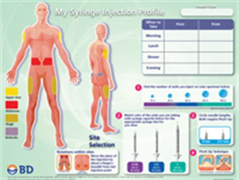 Injection Teaching Tools For Diabetes Educators From Bd Diabetes Care Insulin Site Rotation Template